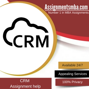 CRM Assignment Help