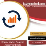 Capital Market Analysis