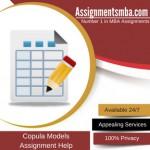 Copula Models