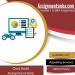 Cost Audit