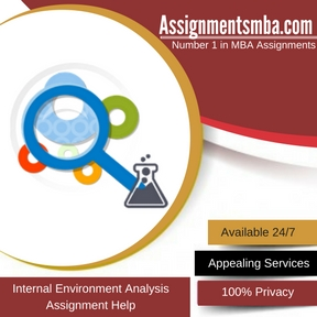 Internal Environment Analysis Assignment Help