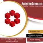 Linear Programming Problems