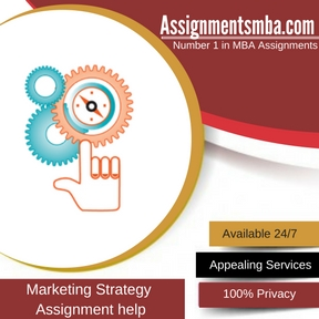 Marketing Strategy assignment Help