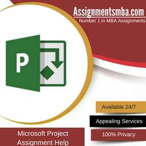Microsoft Project Assignment Help