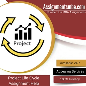 Project Life Cycle Assignment Help