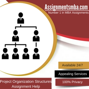 Project Organization Structures Assignment Help