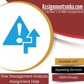 Risk Management Analysis Assignment Help