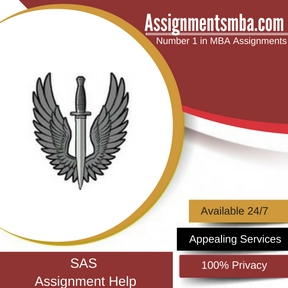SAS Assignment Help