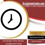 Univariate Time Series