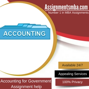 Accounting for Government Assignment Help