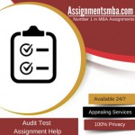 Audit Test