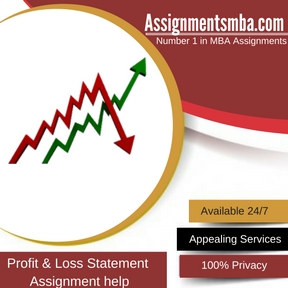 Profit & Loss Statement Assignment Help