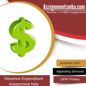 Revenue Expenditure Assignment Help