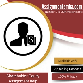 Shareholder Equity Assignment Help