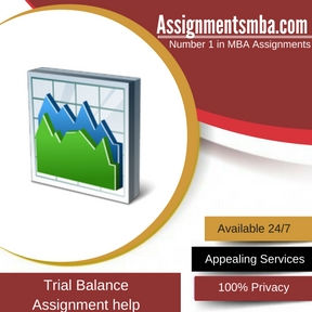 Trial Balance Assignment Help